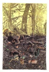 """""""Fallen Tree"""" by Gabriel Jules"""